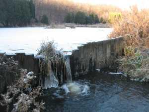 Iris Pond Weir