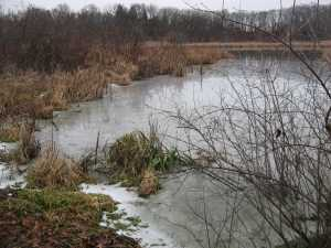 Frozen Water Flow