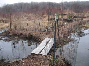 Open Water and Bog Improvements