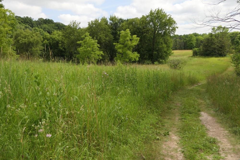Spring Peeper Trail 1