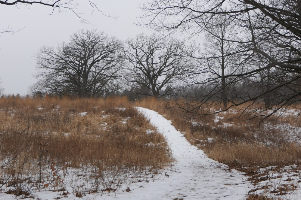 bennett-johnson prairie trail