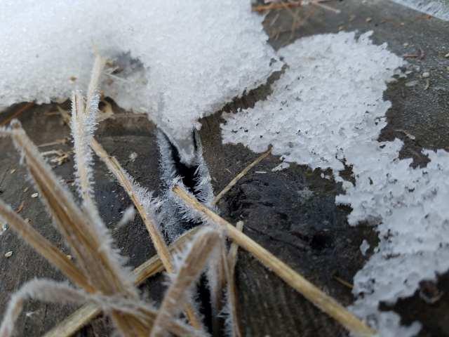 Frosty Ice