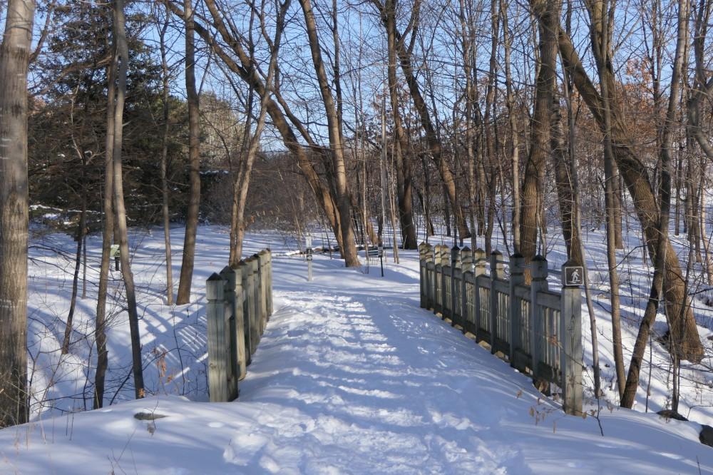 Wildlife Garden trail