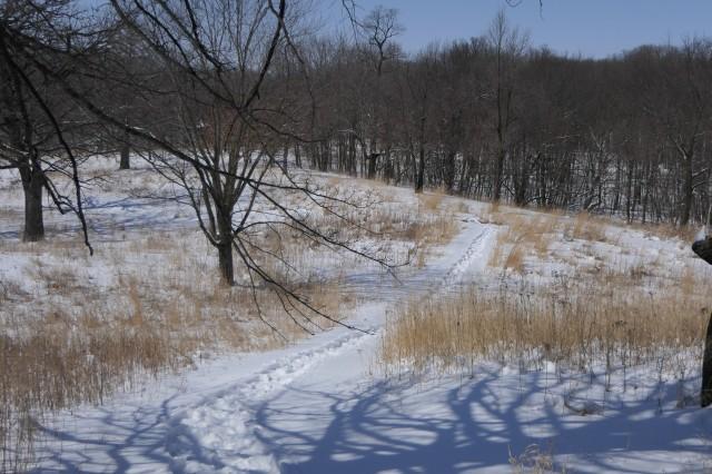 Snowshoe trail in the prairie