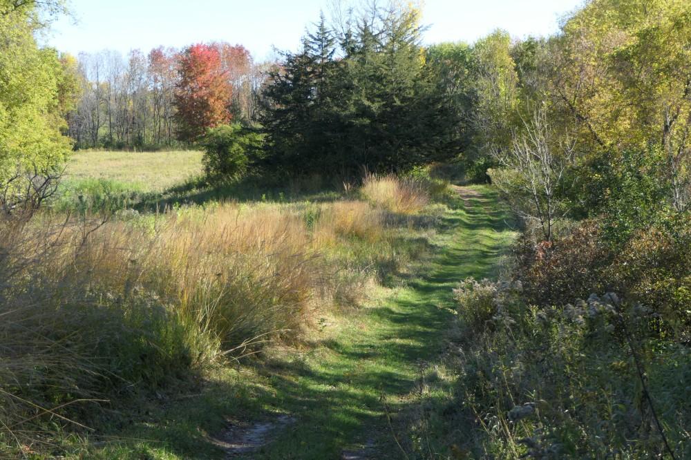 Spring Peeper Trail