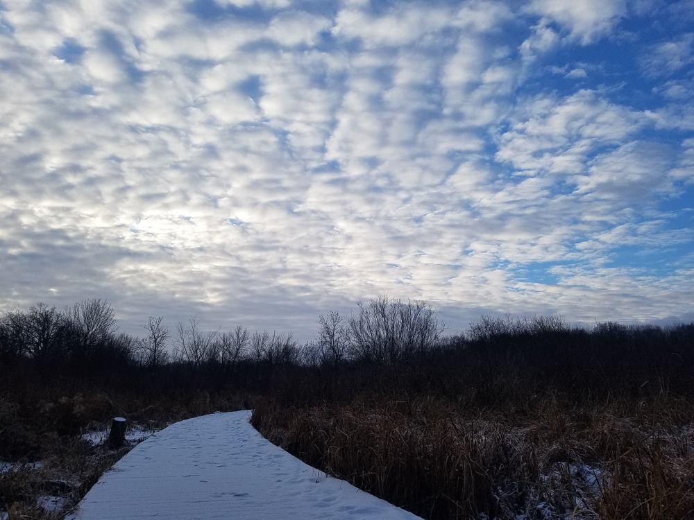 Altocumulus Clouds at Sunrise