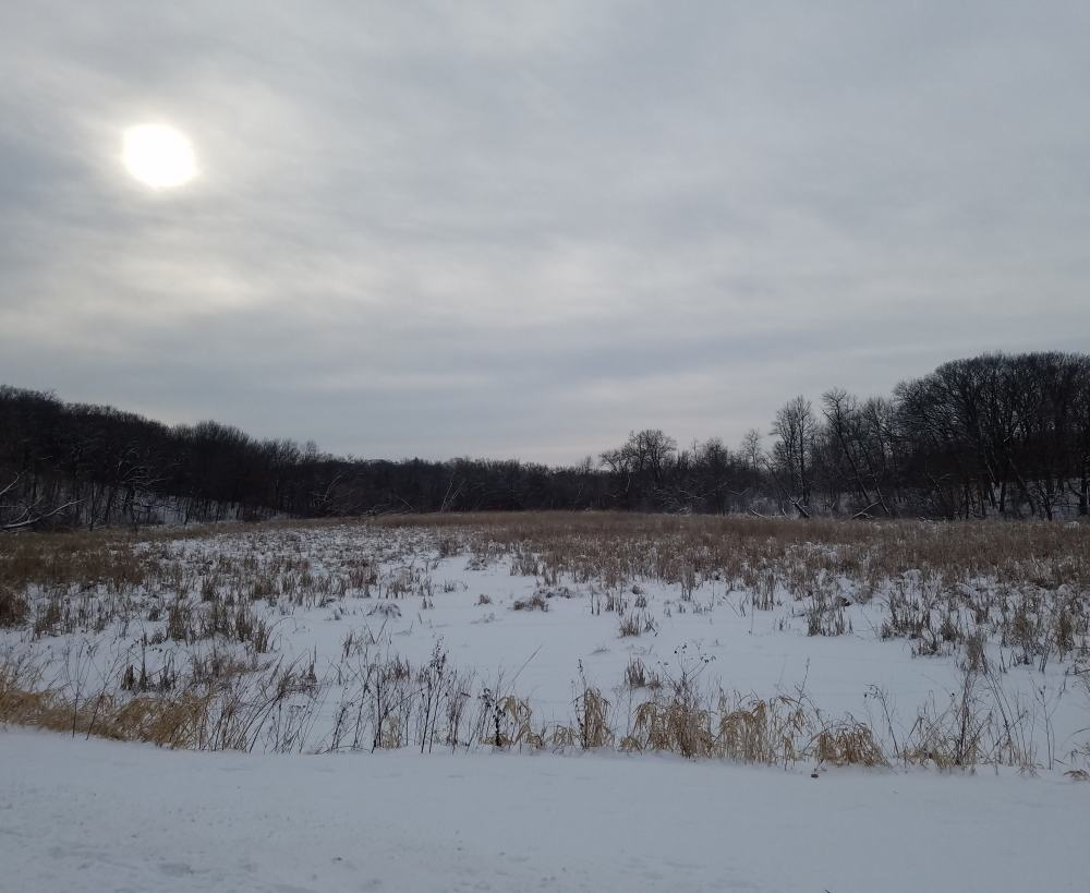 Dim Winter Light